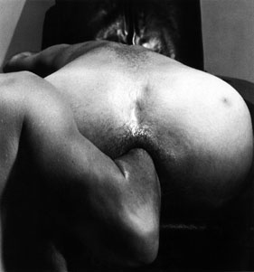 robert mapplethorpe: the perfect moment